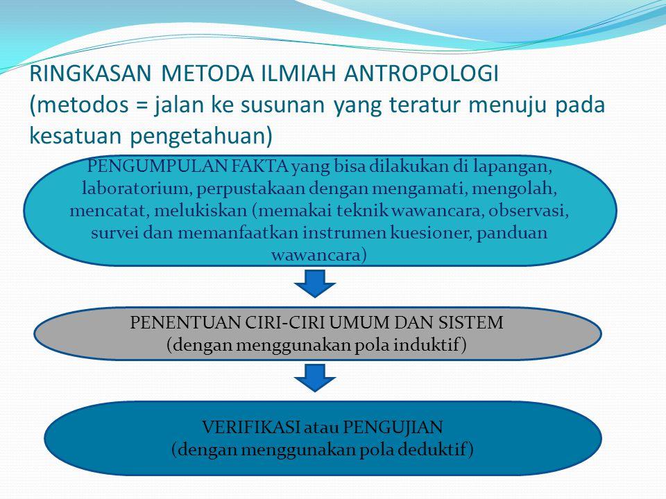RINGKASAN METODA ILMIAH ANTROPOLOGI (metodos = jalan ke susunan yang teratur menuju pada kesatuan pengetahuan) PENGUMPULAN FAKTA yang bisa dilakukan d
