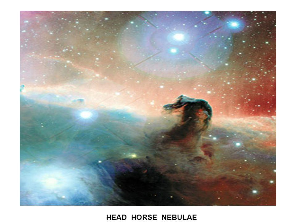HEAD HORSE NEBULAE