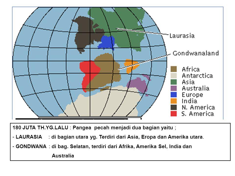 180 JUTA TH.YG.LALU : Pangea pecah menjadi dua bagian yaitu ; - LAURASIA : di bagian utara yg.