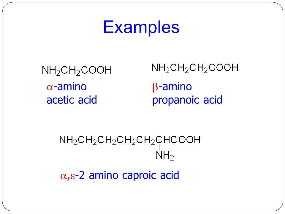  -amino acetic acid  -amino propanoic acid ,  -2 amino caproic acid Examples