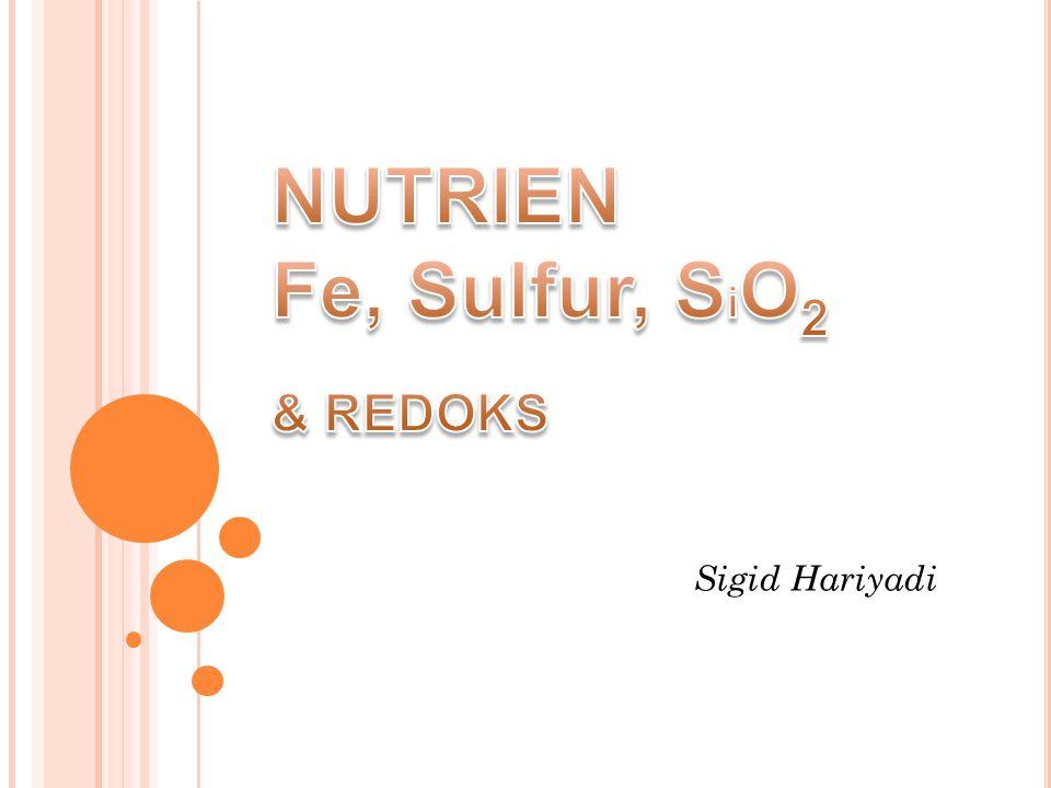  Banyak dari reaksi-reaksi antara berbagai elemen nutrien saling berhubungan, kondisi reaksi yang satu dapat mempengaruhi keberadaan yang lain.