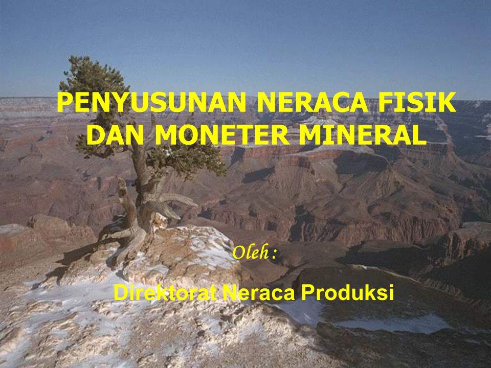 1 PENYUSUNAN NERACA FISIK DAN MONETER MINERAL Oleh : Direktorat Neraca Produksi