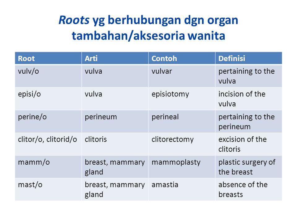 Roots yg berhubungan dgn organ tambahan/aksesoria wanita RootArtiContohDefinisi vulv/ovulvavulvarpertaining to the vulva episi/ovulvaepisiotomyincision of the vulva perine/operineumperinealpertaining to the perineum clitor/o, clitorid/oclitorisclitorectomyexcision of the clitoris mamm/obreast, mammary gland mammoplastyplastic surgery of the breast mast/obreast, mammary gland amastiaabsence of the breasts