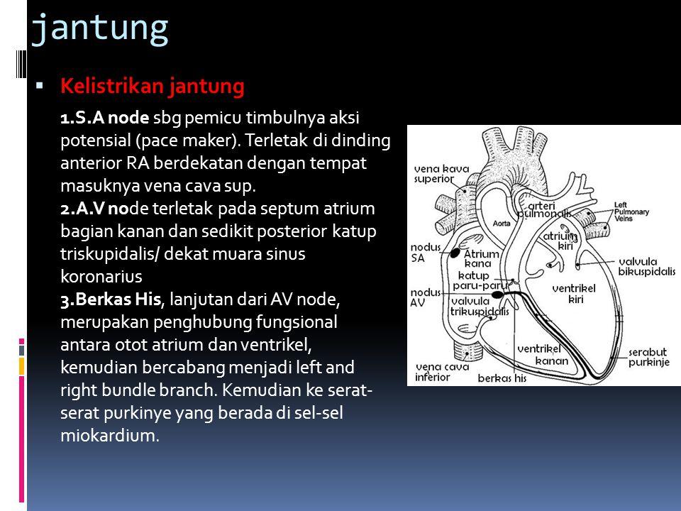  Kardiomiopathi Kelainan otot jantung yang diketahui sebabnya  Kardiomiopathi dilatasi/kongestif penyakit miokard yang ditandai dengan dilatasi ruangan-ruangan jantung dan gagal jantung kongestif akibat berkurangnya fungsi pompa sistolik secara progresif serta peningkatan volume akhir diastolik dan sistolik