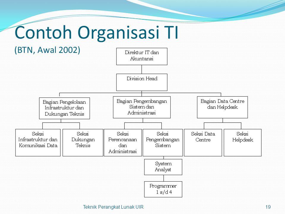 Contoh Organisasi TI (BTN, Awal 2002) Teknik Perangkat Lunak UIR19
