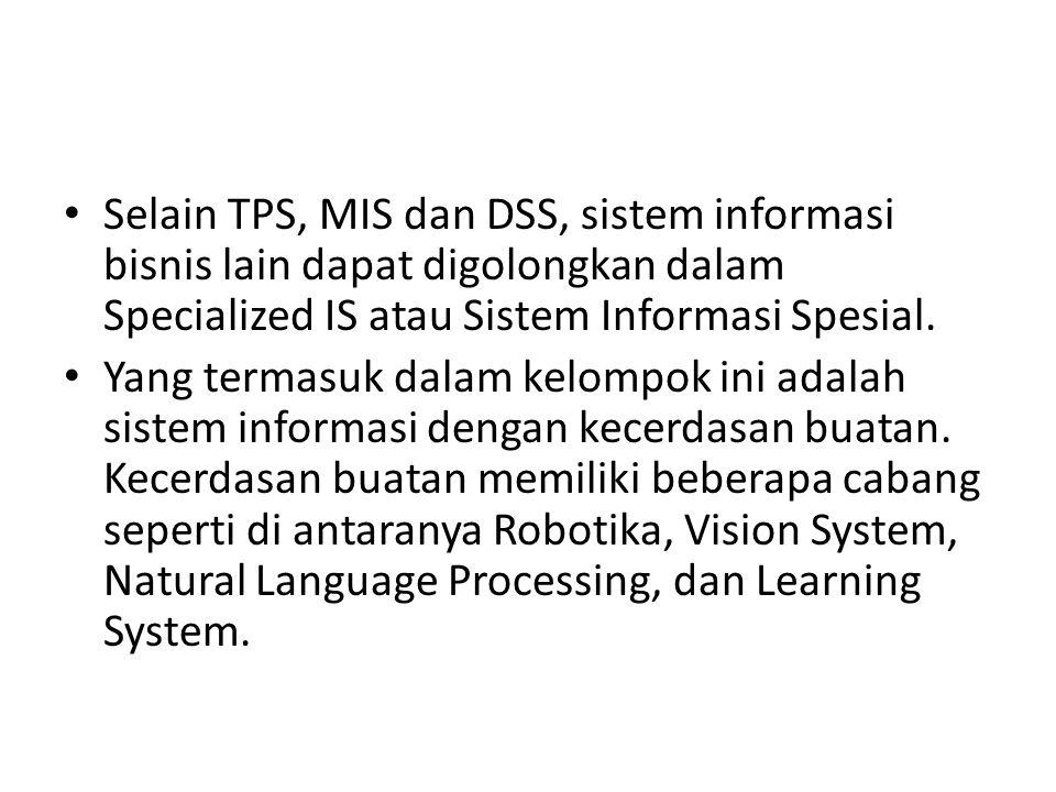 Selain TPS, MIS dan DSS, sistem informasi bisnis lain dapat digolongkan dalam Specialized IS atau Sistem Informasi Spesial.