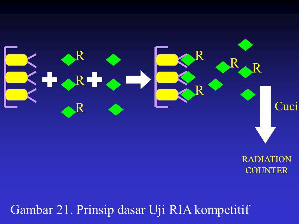Gambar 21. Prinsip dasar Uji RIA kompetitif R R R R R R R RADIATION COUNTER Cuci
