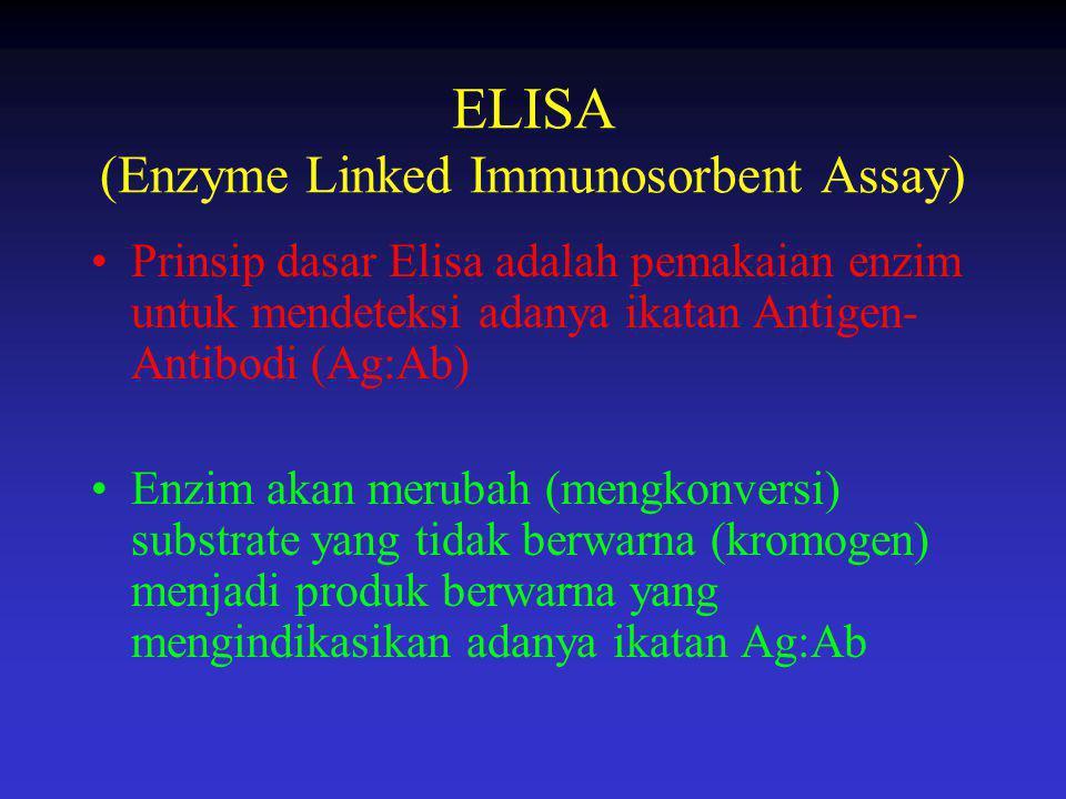 ELISA (Enzyme Linked Immunosorbent Assay) Prinsip dasar Elisa adalah pemakaian enzim untuk mendeteksi adanya ikatan Antigen- Antibodi (Ag:Ab) Enzim ak