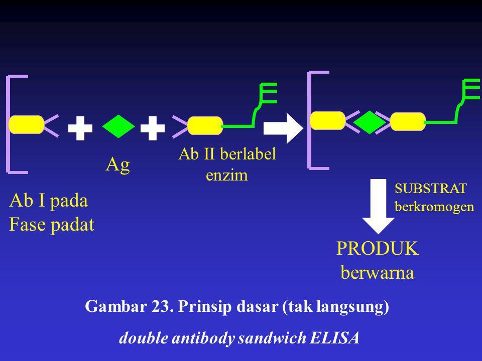 SUBSTRAT berkromogen PRODUK berwarna Ag Ab I pada Fase padat Ab II berlabel enzim Gambar 23. Prinsip dasar (tak langsung) double antibody sandwich ELI