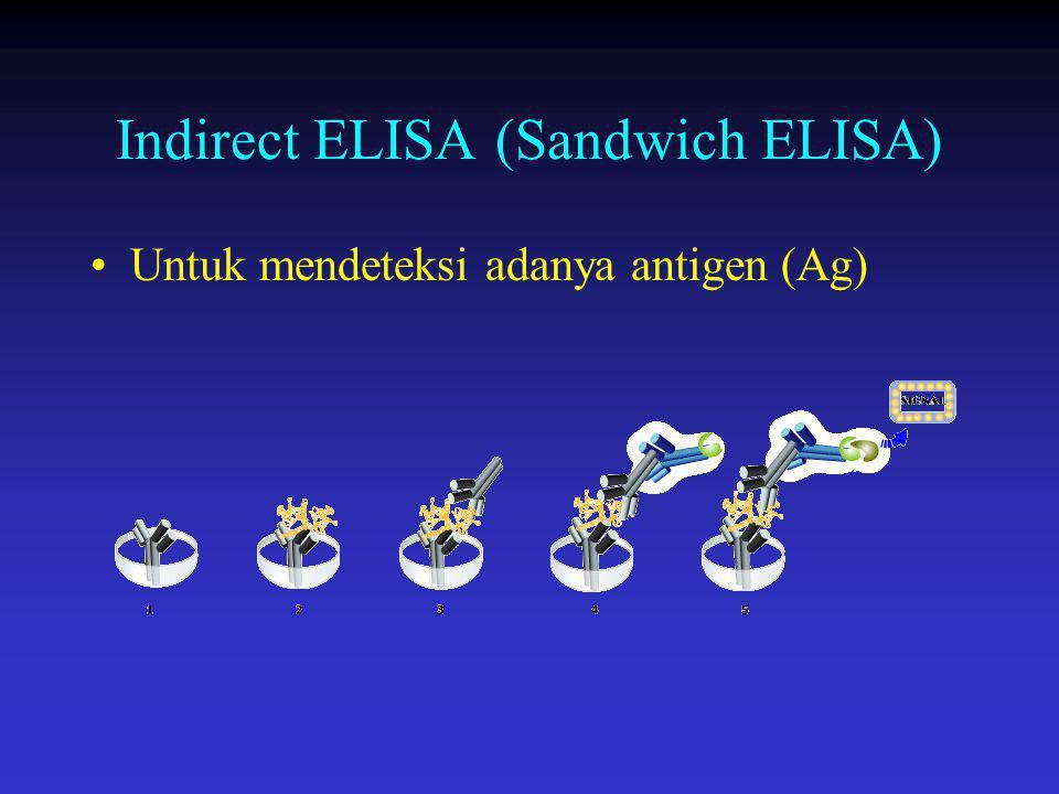 Indirect ELISA (Sandwich ELISA) Untuk mendeteksi adanya antigen (Ag)