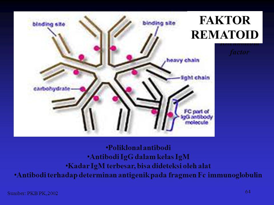 64 Poliklonal antibodi Antibodi IgG dalam kelas IgM Kadar IgM terbesar, bisa dideteksi oleh alat Antibodi terhadap determinan antigenik pada fragmen F