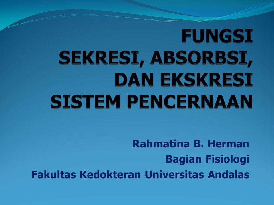 Rahmatina B. Herman Bagian Fisiologi Fakultas Kedokteran Universitas Andalas