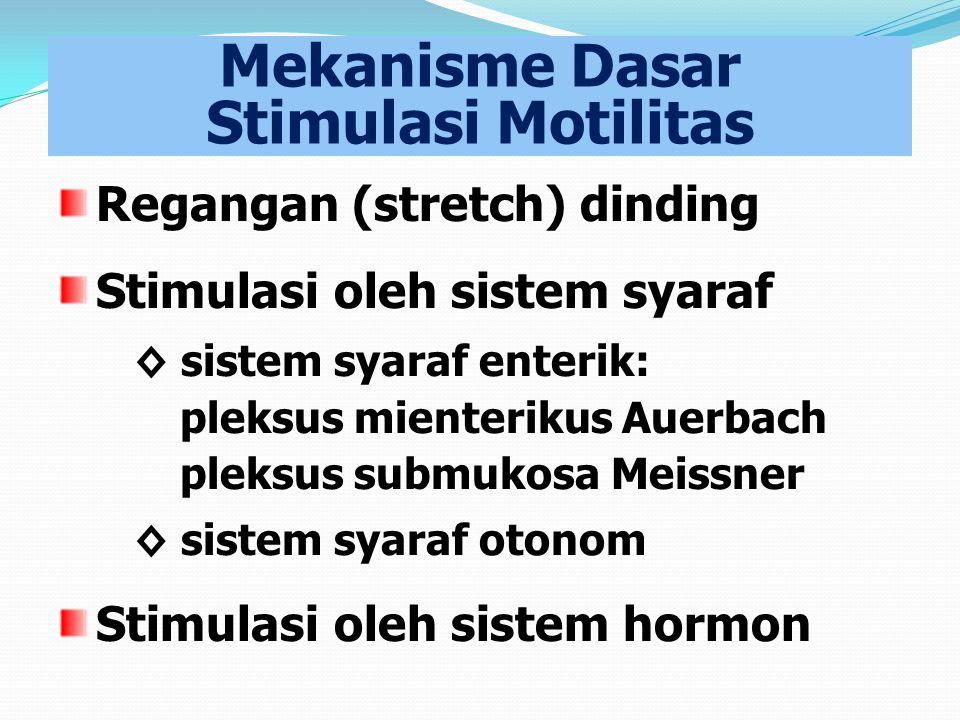 Mekanisme Dasar Stimulasi Motilitas Regangan (stretch) dinding Stimulasi oleh sistem syaraf ◊ sistem syaraf enterik: pleksus mienterikus Auerbach plek