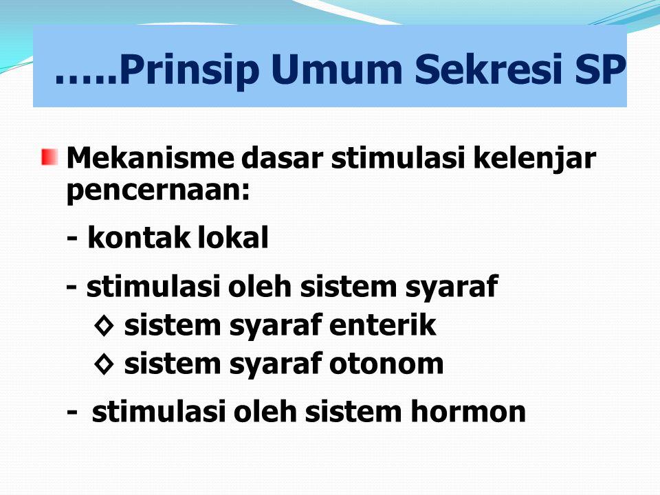 …..Prinsip Umum Sekresi SP Mekanisme dasar stimulasi kelenjar pencernaan: - kontak lokal - stimulasi oleh sistem syaraf ◊ sistem syaraf enterik ◊ sist