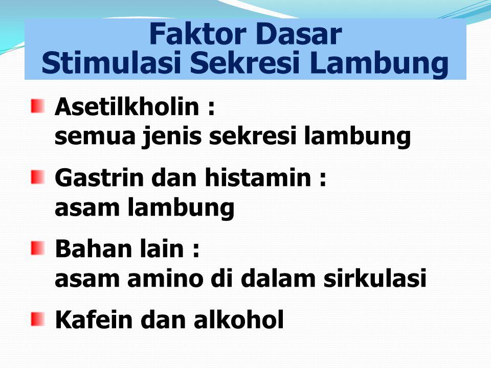 Faktor Dasar Stimulasi Sekresi Lambung Asetilkholin : semua jenis sekresi lambung Gastrin dan histamin : asam lambung Bahan lain : asam amino di dalam