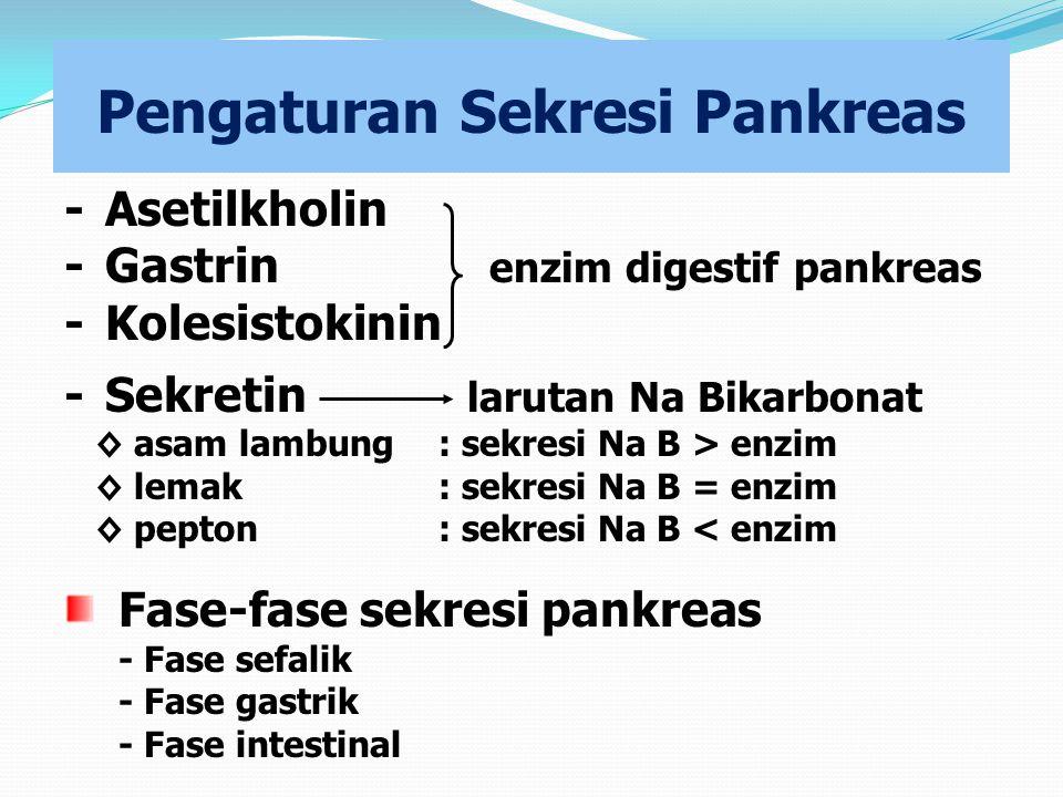 Pengaturan Sekresi Pankreas -Asetilkholin - Gastrin enzim digestif pankreas - Kolesistokinin - Sekretin larutan Na Bikarbonat ◊ asam lambung : sekresi