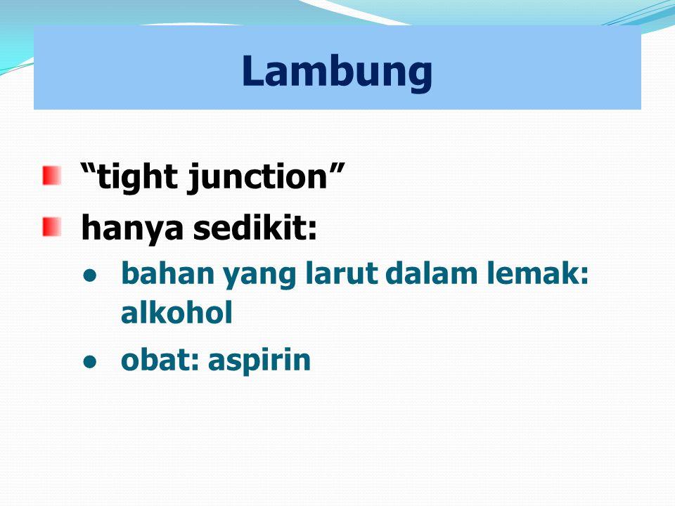 """Lambung """"tight junction"""" hanya sedikit: ● bahan yang larut dalam lemak: alkohol ● obat: aspirin"""