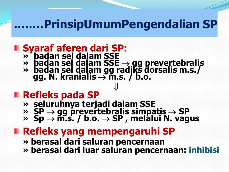 ..……PrinsipUmumPengendalian SP Syaraf aferen dari SP: »badan sel dalam SSE » badan sel dalam SSE  gg prevertebralis » badan sel dalam gg radiks dorsa
