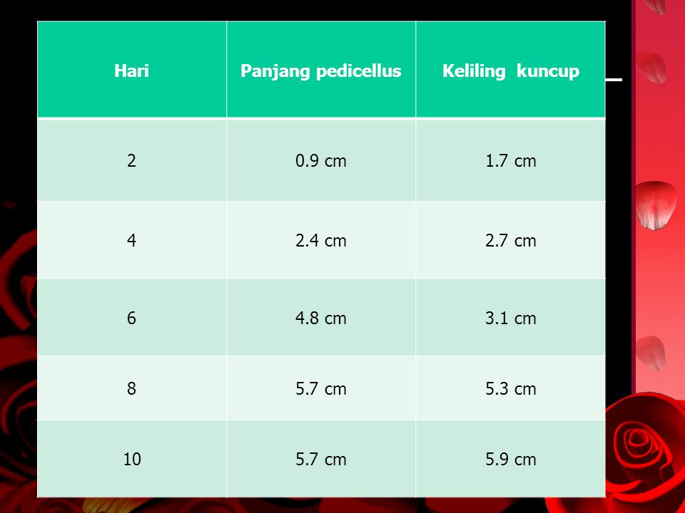 HariPanjang pedicellusKeliling kuncup 20.9 cm1.7 cm 42.4 cm2.7 cm 64.8 cm3.1 cm 85.7 cm5.3 cm 105.7 cm5.9 cm