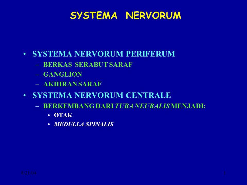 8/21/041 SYSTEMA NERVORUM SYSTEMA NERVORUM PERIFERUM –BERKAS SERABUT SARAF –GANGLION –AKHIRAN SARAF SYSTEMA NERVORUM CENTRALE –BERKEMBANG DARI TUBA NE