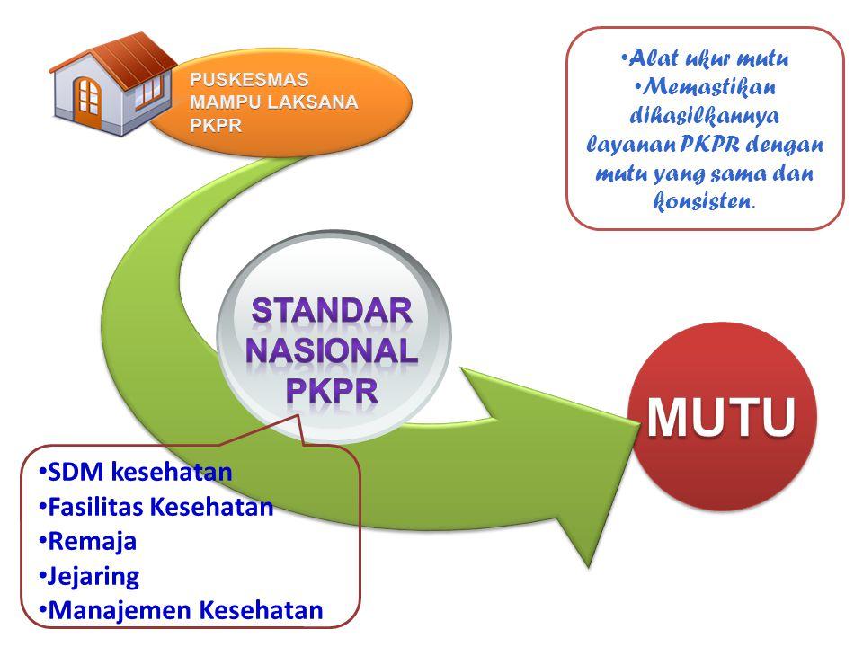 SDM kesehatan Fasilitas Kesehatan Remaja Jejaring Manajemen Kesehatan Alat ukur mutu Memastikan dihasilkannya layanan PKPR dengan mutu yang sama dan k
