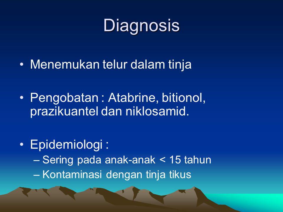 Diagnosis Menemukan telur dalam tinja Pengobatan : Atabrine, bitionol, prazikuantel dan niklosamid. Epidemiologi : –Sering pada anak-anak < 15 tahun –