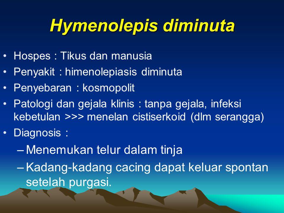 Hymenolepis diminuta Hospes : Tikus dan manusia Penyakit : himenolepiasis diminuta Penyebaran : kosmopolit Patologi dan gejala klinis : tanpa gejala,