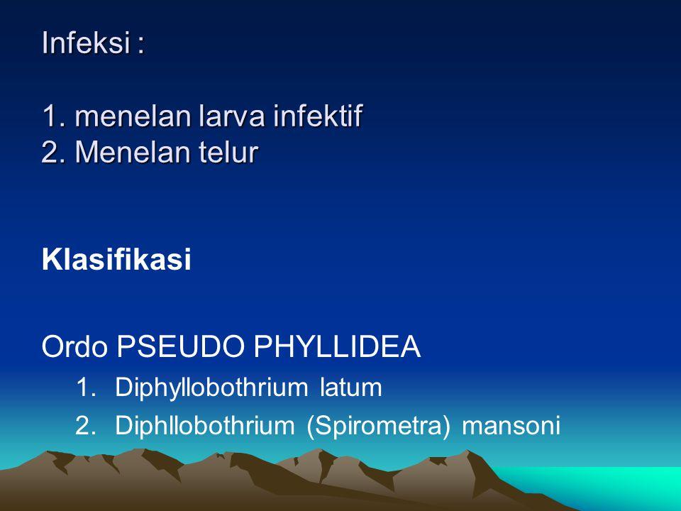Infeksi : 1. menelan larva infektif 2. Menelan telur Klasifikasi Ordo PSEUDO PHYLLIDEA 1.Diphyllobothrium latum 2.Diphllobothrium (Spirometra) mansoni