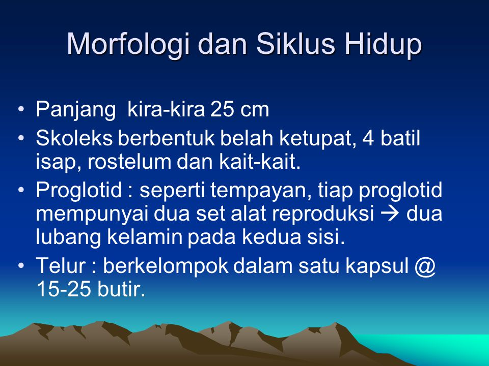 Morfologi dan Siklus Hidup Panjang kira-kira 25 cm Skoleks berbentuk belah ketupat, 4 batil isap, rostelum dan kait-kait. Proglotid : seperti tempayan