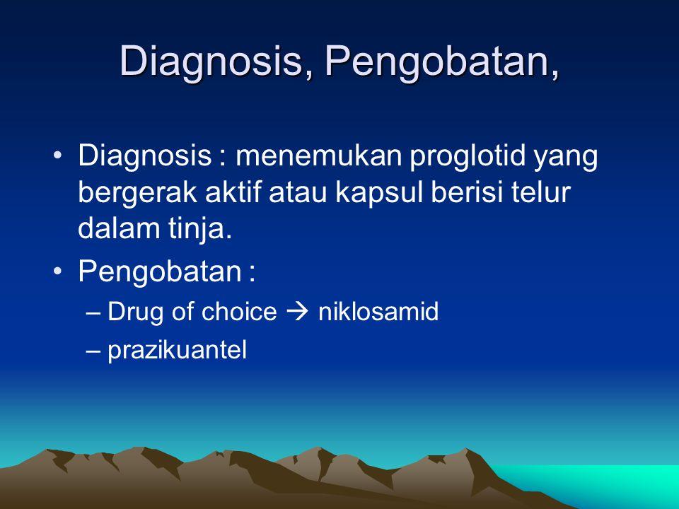 Diagnosis, Pengobatan, Diagnosis : menemukan proglotid yang bergerak aktif atau kapsul berisi telur dalam tinja. Pengobatan : –Drug of choice  niklos