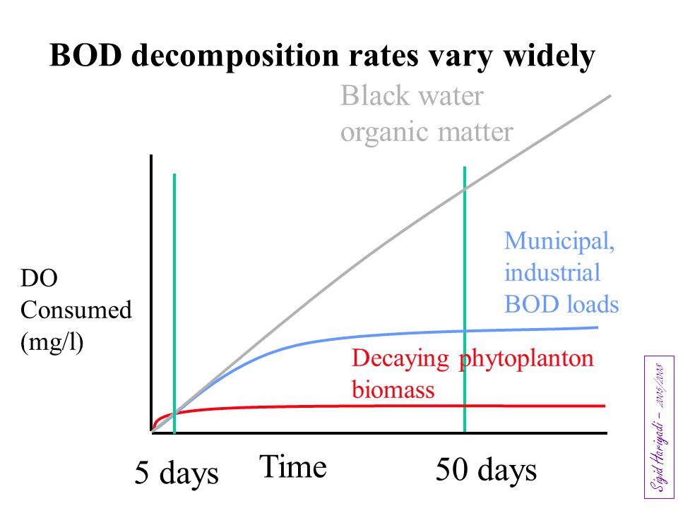 BOD decomposition rates vary widely Time 50 days 5 days Black water organic matter Municipal, industrial BOD loads DO Consumed (mg/l) Decaying phytopl