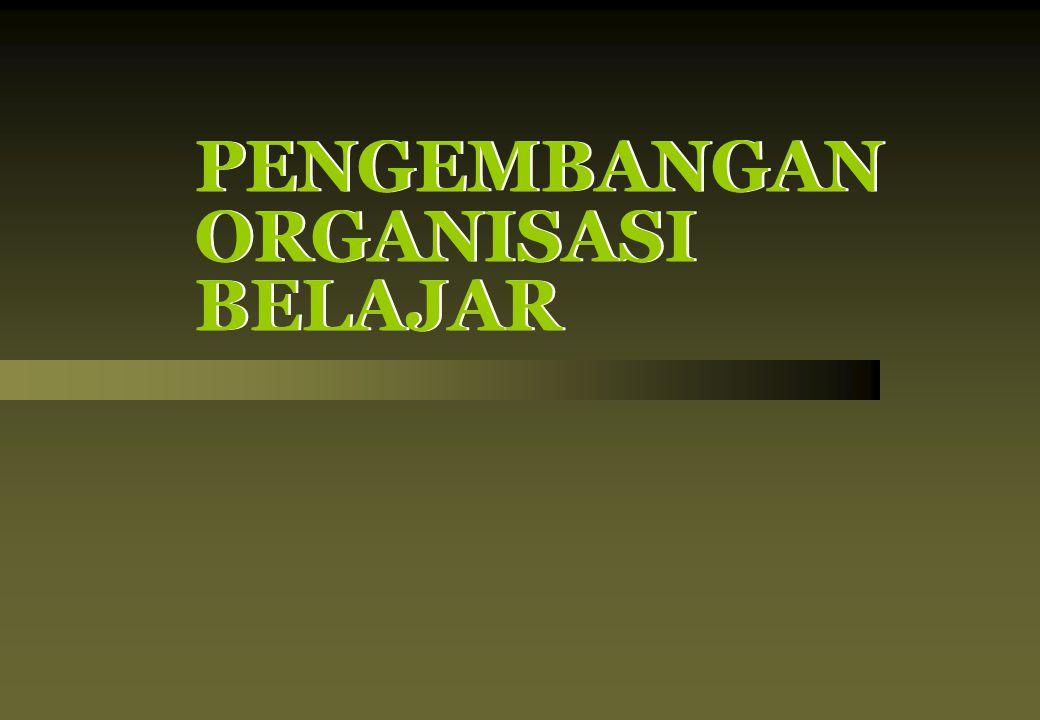 PENGEMBANGAN ORGANISASI BELAJAR PENGEMBANGAN ORGANISASI BELAJAR