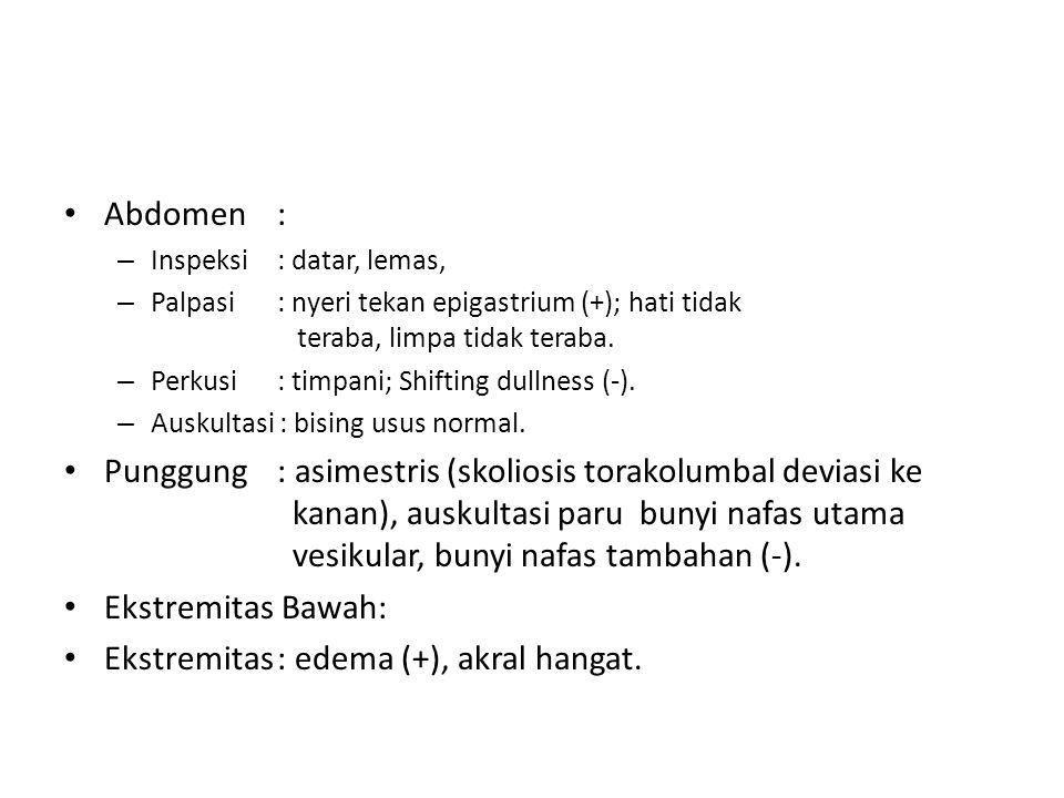 Abdomen: – Inspeksi: datar, lemas, – Palpasi: nyeri tekan epigastrium (+); hati tidak teraba, limpa tidak teraba. – Perkusi: timpani; Shifting dullnes
