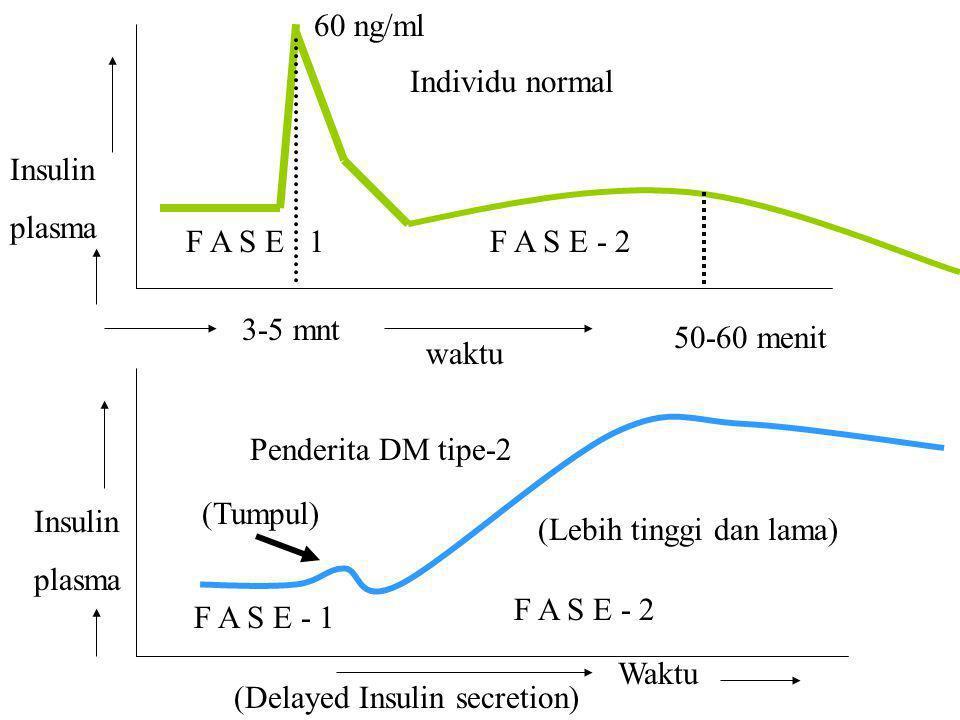 F A S E 1 F A S E - 2 F A S E - 1 F A S E - 2 Individu normal Penderita DM tipe-2 Insulin plasma waktu Insulin plasma (Tumpul) (Lebih tinggi dan lama)