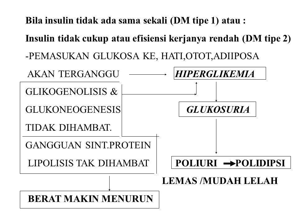 Bila insulin tidak ada sama sekali (DM tipe 1) atau : Insulin tidak cukup atau efisiensi kerjanya rendah (DM tipe 2) -PEMASUKAN GLUKOSA KE, HATI,OTOT,