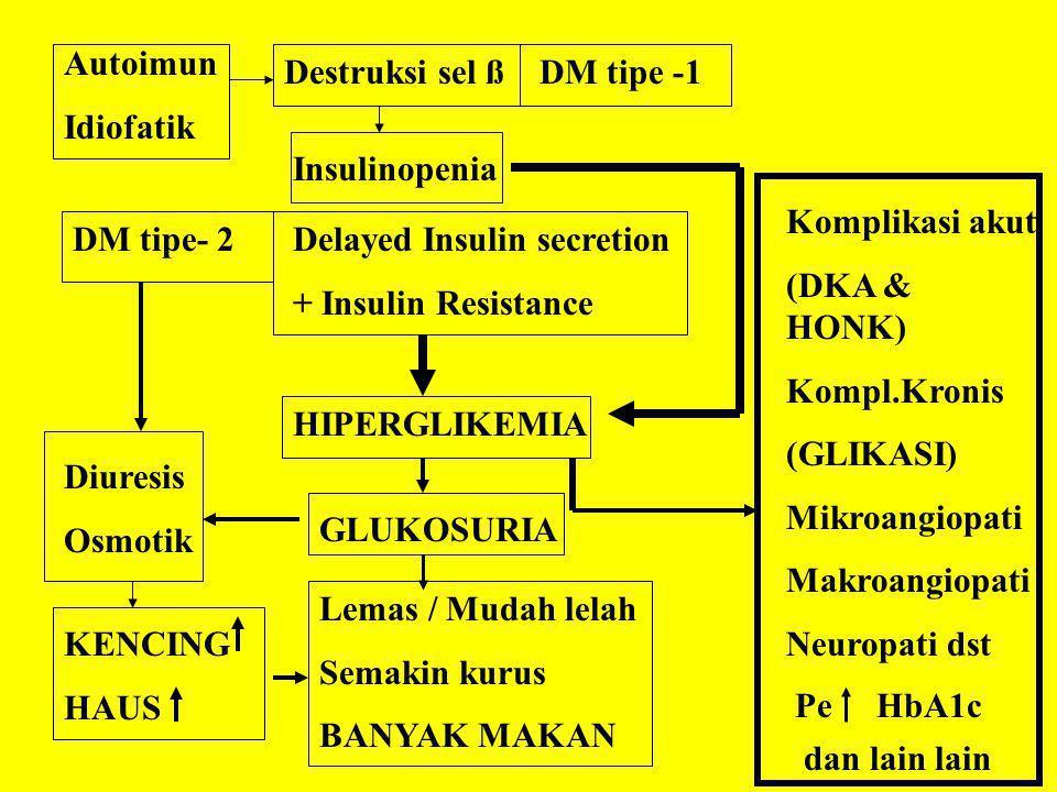Autoimun Idiofatik Destruksi sel ßDM tipe -1 Insulinopenia DM tipe- 2Delayed Insulin secretion + Insulin Resistance HIPERGLIKEMIA GLUKOSURIA Diuresis