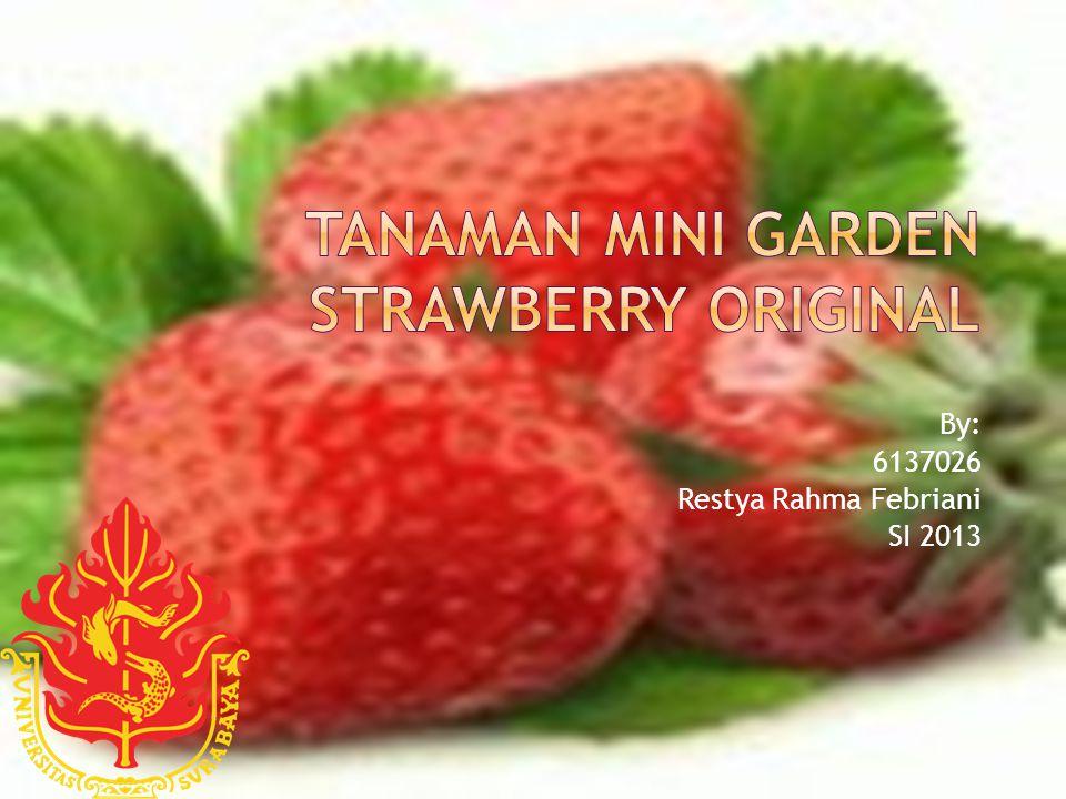 By: 6137026 Restya Rahma Febriani SI 2013