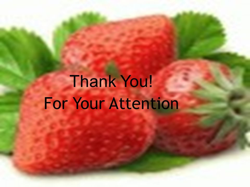 Thank You! For Your Attention