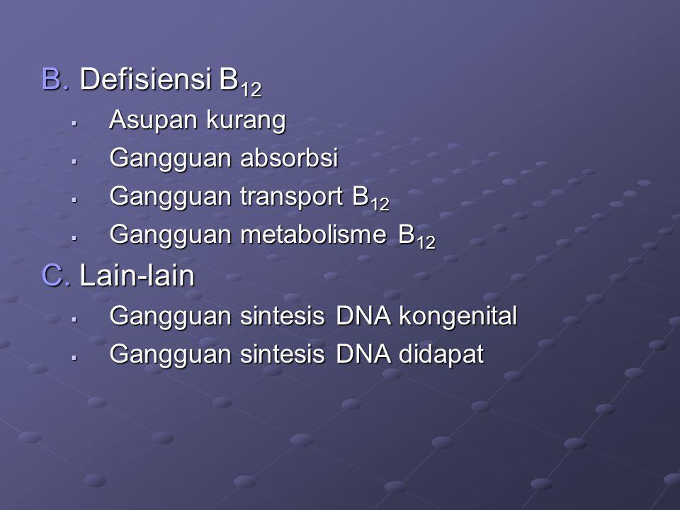 B.Defisiensi B 12  Asupan kurang  Gangguan absorbsi  Gangguan transport B 12  Gangguan metabolisme B 12 C.Lain-lain  Gangguan sintesis DNA kongenital  Gangguan sintesis DNA didapat