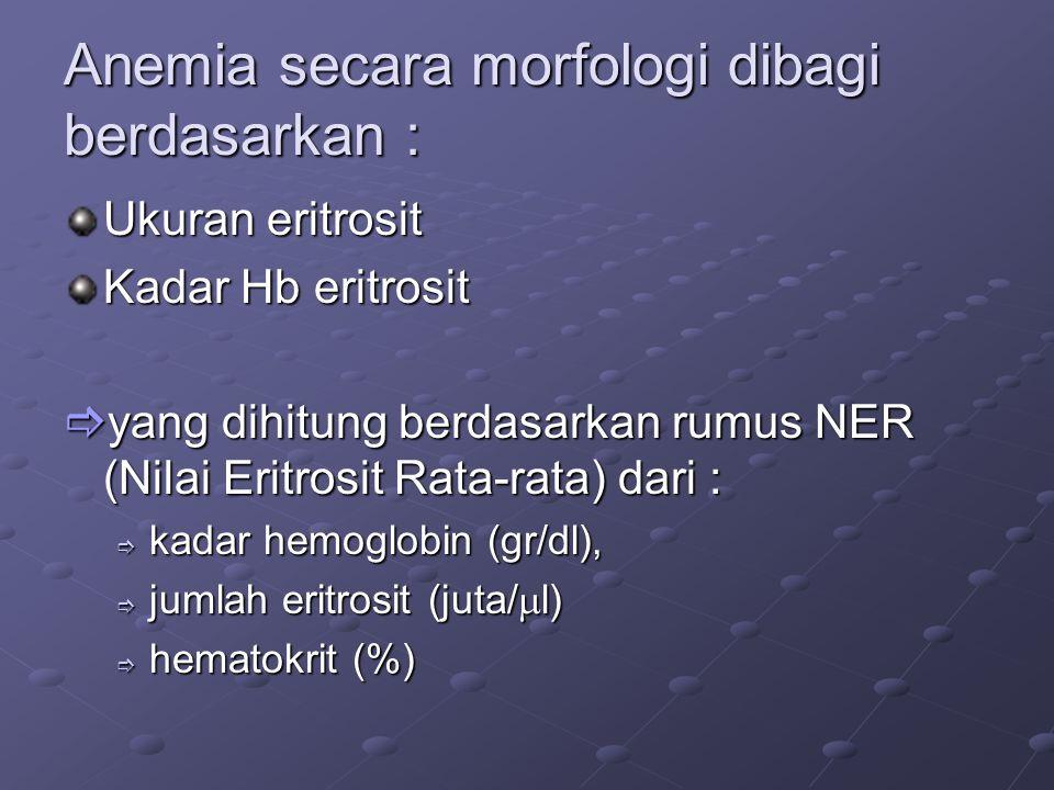 Anemia secara morfologi dibagi berdasarkan : Ukuran eritrosit Kadar Hb eritrosit  yang dihitung berdasarkan rumus NER (Nilai Eritrosit Rata-rata) dari :  kadar hemoglobin (gr/dl),  jumlah eritrosit (juta/  l)  hematokrit (%)