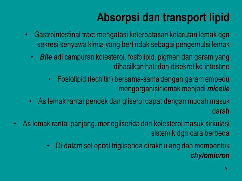 4 Absorpsi dan transport lipid