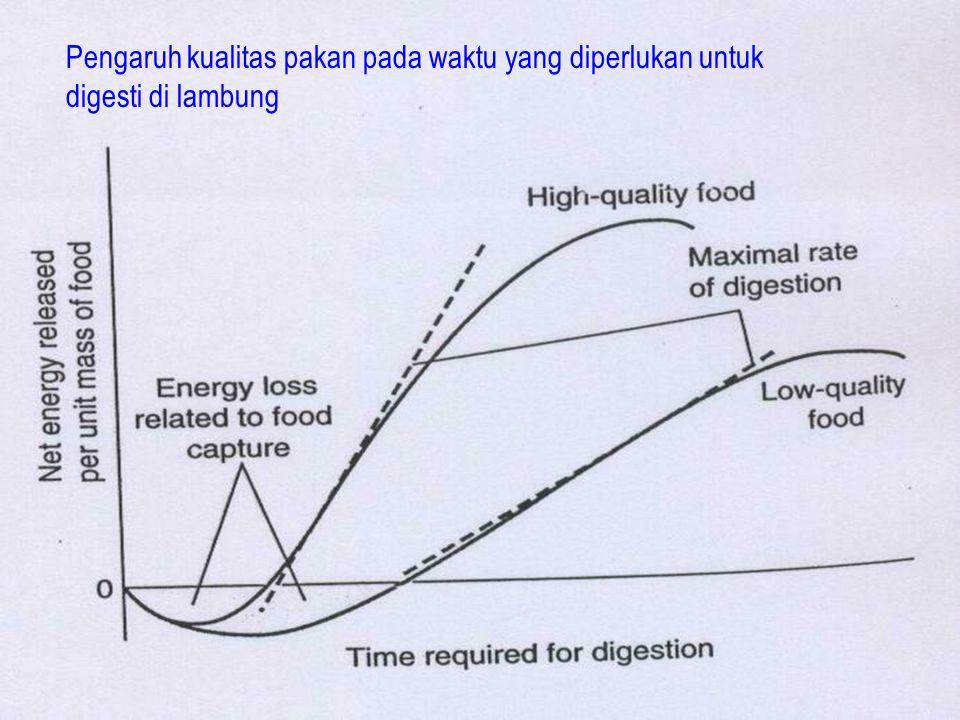 24 Pengaruh kualitas pakan pada waktu yang diperlukan untuk digesti di lambung