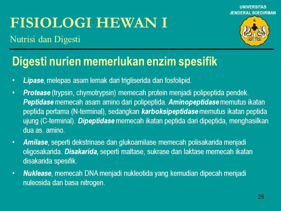 25 UNIVERSITAS JENDERAL SOEDIRMAN FISIOLOGI HEWAN I Nutrisi dan Digesti Digesti nurien memerlukan enzim spesifik Lipase, melepas asam lemak dari trigl