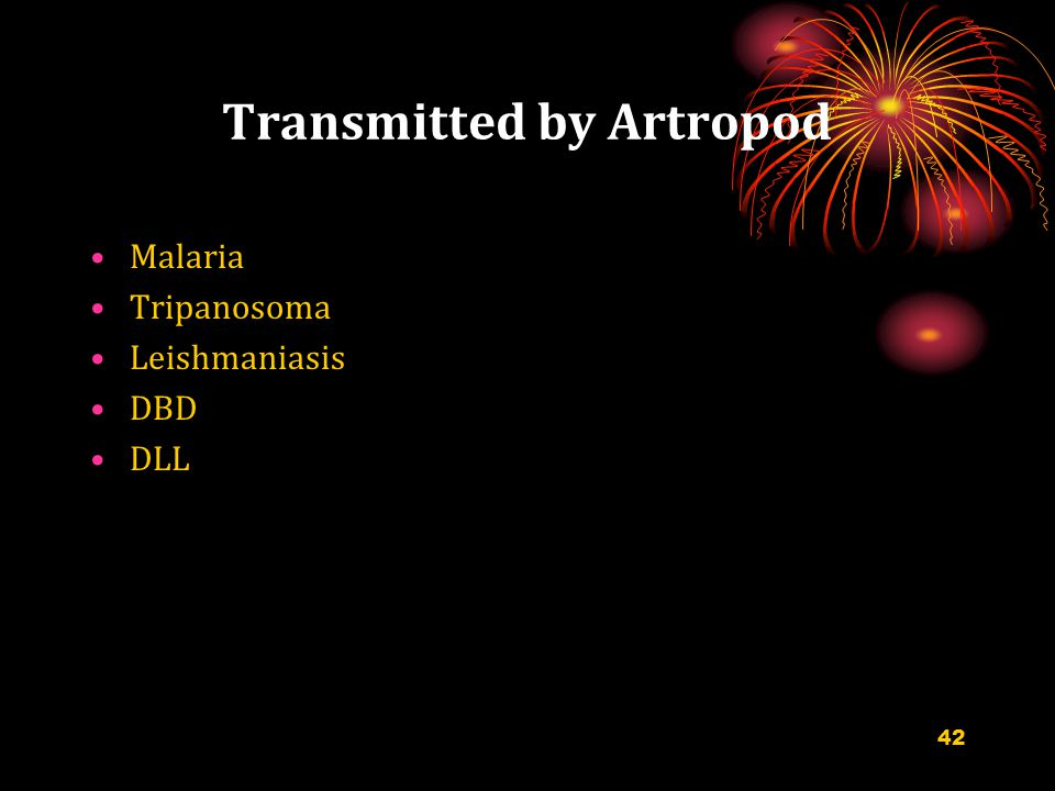 Transmitted by Artropod Malaria Tripanosoma Leishmaniasis DBD DLL 42