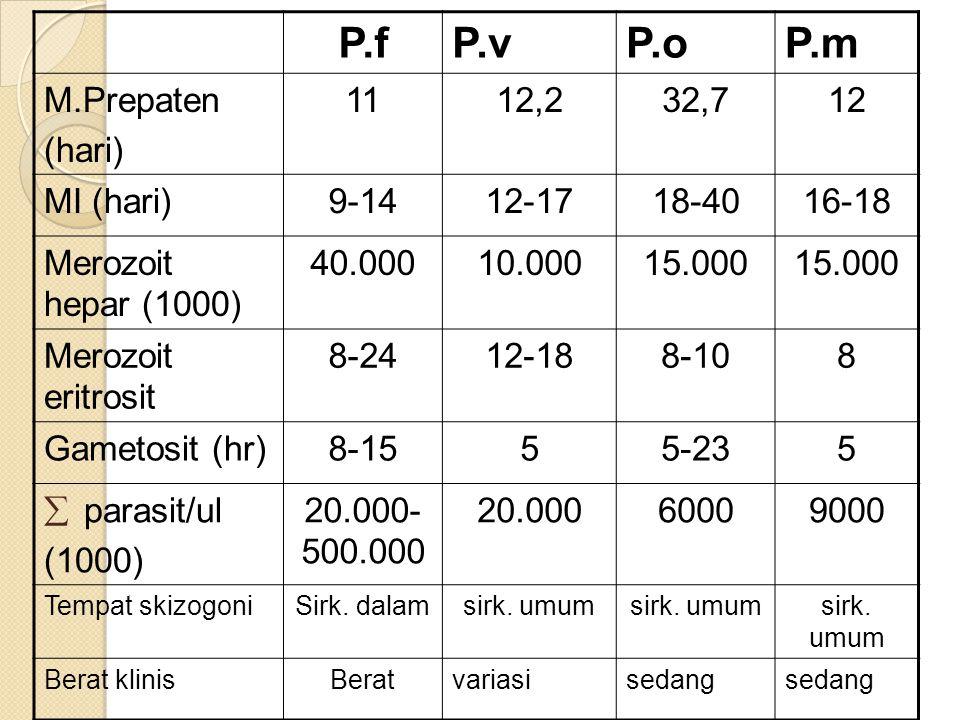 P. vivax Tanpa pengobatan demam dapat sembuh, tapi dapat relaps kembali, adanya laporan malaria berat P. ovale Parasitemia sedikit P. malariae Dapat m