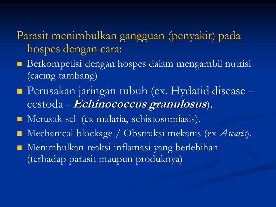 Kemungkinan yang terjadi apabila seseorang terinfeksi parasit: Host - susceptible - parasite survives. Host - insusceptible - parasite killed by innat