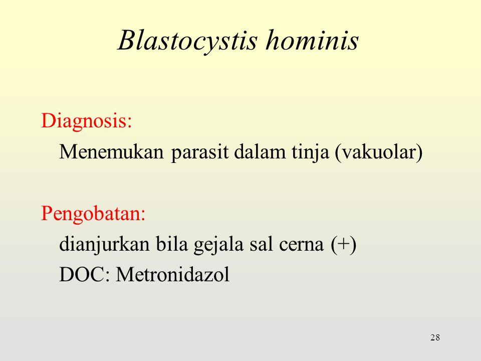 Diagnosis: Menemukan parasit dalam tinja (vakuolar) Pengobatan: dianjurkan bila gejala sal cerna (+) DOC: Metronidazol 28 Blastocystis hominis