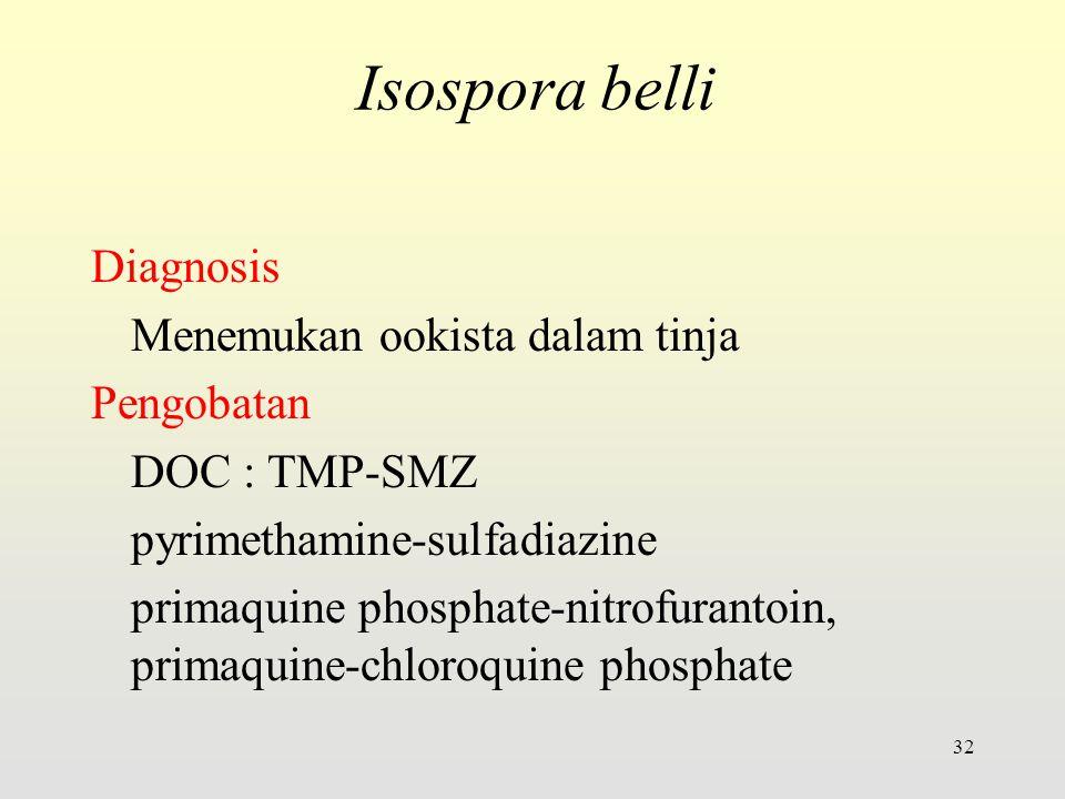 Diagnosis Menemukan ookista dalam tinja Pengobatan DOC : TMP-SMZ pyrimethamine-sulfadiazine primaquine phosphate-nitrofurantoin, primaquine-chloroquine phosphate 32 Isospora belli