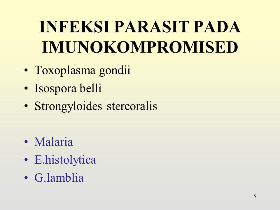 Morfologi dan Daur Hidup 26 Blastocystis hominis