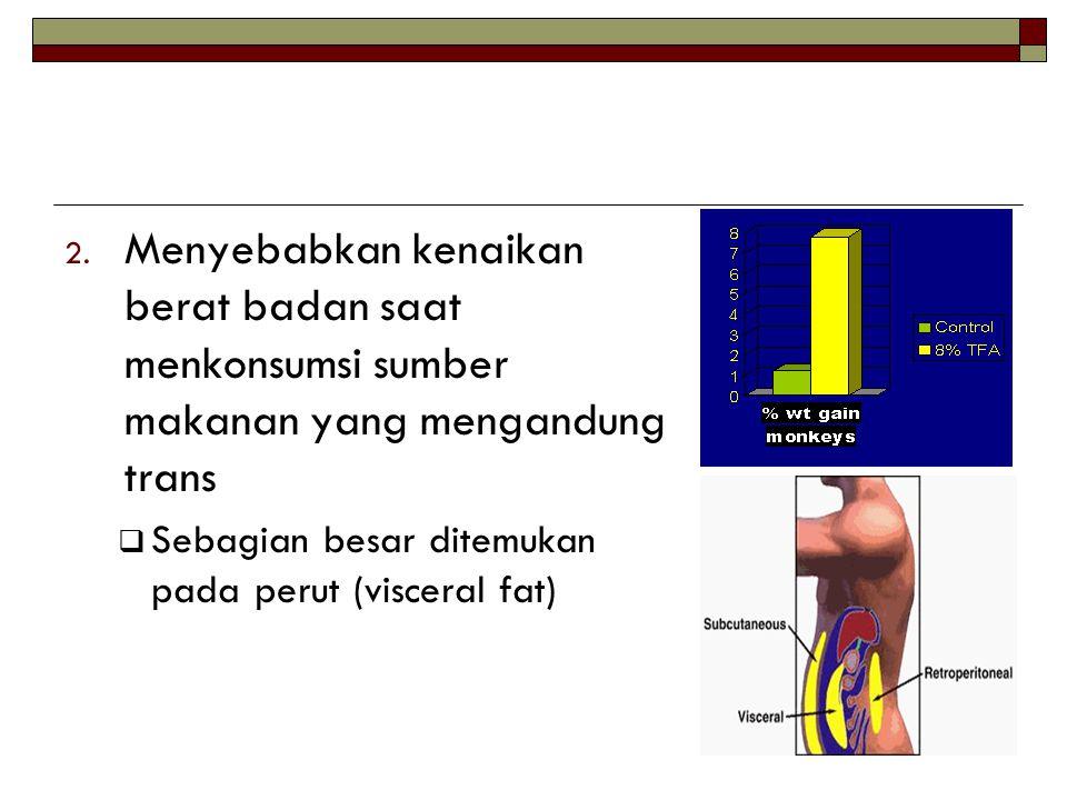 2. Menyebabkan kenaikan berat badan saat menkonsumsi sumber makanan yang mengandung trans  Sebagian besar ditemukan pada perut (visceral fat)